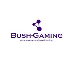 Bush-Gaming