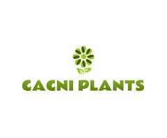 CACNI PLANTS